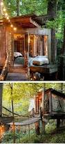 best 25 cool tree houses ideas on pinterest beautiful tree