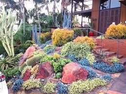 San Diego Landscape by Plants Comprehensive Select Landscapes Blog