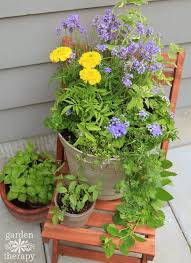 Flowering Patio Plants Plant A Mosquito Repelling Container Garden To Protect