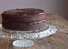 double chocolate layer cake that susan williams