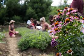 a community of herbalists takes root on the north fork edible