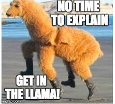 No Time To Explain Meme - image tagged in llama imgflip