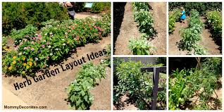 Herb Garden Layout Herb Vegetable Fruit And Garden Layout Ideas Blogs