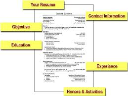 Sample Objectives In A Resume by Cv Writing Workshop