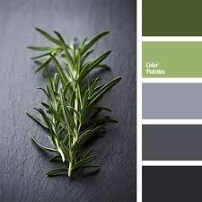 best 25 sage color palette ideas on pinterest interior color