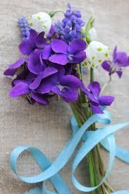 best 25 muscari flower pictures ideas on pinterest grape