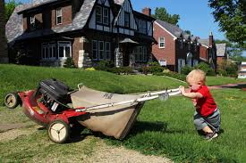 Image result for yard work pictures