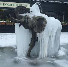 Elephant Meme - put me like this frozen elephant fountain