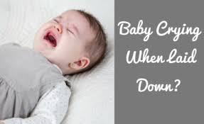Stop Comfort Nursing Baby Sleep Consultant Baby Sleep Training Newborn Sleep