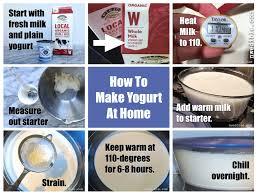 do you need to heat milk for yogurt making northwest edible life