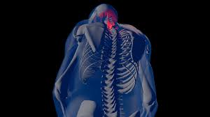 4k neck pain in human body transparent design 3d animation motion