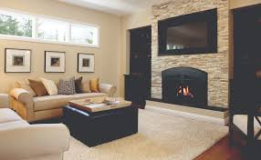 Contemporary Fireplace Doors by Contemporary Fireplace Ideas The Fireplace Place