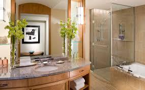 hotel bathroom ideas luxury hotel bathroom ideas furniture