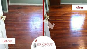 protect hardwood floors how to prevent your pets from wreaking havoc on your hardwood floors