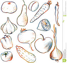 set of drawing vegetables and fruits stock vector image 49241159
