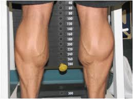 Guys Calf - a routine for calves that growing