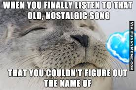 Internet Meme Songs - animal memes when you finally find the song you are looking for a