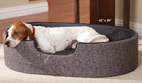 dog nesting bed good ideas for nesting dog beds home decor furniture