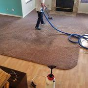 d maxx quality carpet upholstery care 74 photos 119 reviews