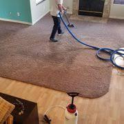 d maxx quality carpet upholstery care 74 photos 119 reviews