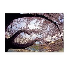 cherry blossom bedroom photos and video wylielauderhouse com