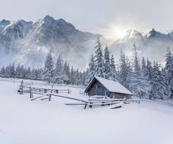 winter nature wallpapers mountains trees gorges winter rocks snow nature wallpapers for