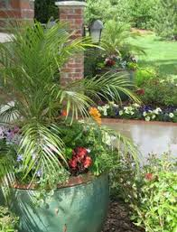 Tropical Potted Plants Outdoor - tropical potted plants design pictures remodel decor and ideas