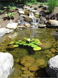 fresh easy backyard pond ideas 13049