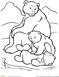 polar bear clipart coloring pencil color polar bear