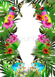 Flower And Bird - tropical flowers and leaves and beautiful bird frog and butterfly