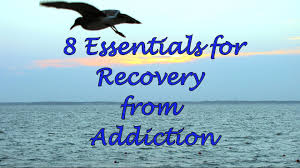 Essentials For A New Home 8 Essentials For Recovery From Addiction Youtube