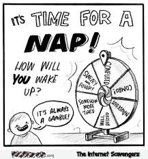 Funny Comic Memes - wheel of nap funny comic pmslweb