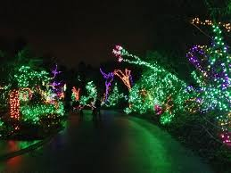 Phoenix Zoo Christmas Lights holiday the outlaw u0027s magical visit to the gingerbread world of