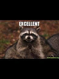 Evil Raccoon Meme - evil raccoon meme blank mne vse pohuj