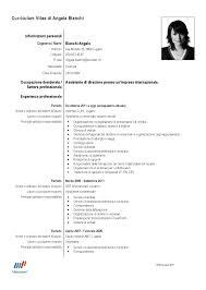 curriculum vitae pdf download da compilare un il vostro curriculum vitae