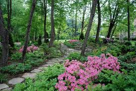 22 tree shade landscaping ideas for your yards home design lover