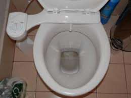 Luxe Bidet Mb110 Bidet Toilets The Hygienic Alternative That Cured My Fissures