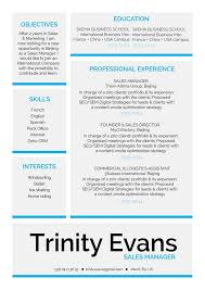 format for professional resume professional resume format exquisite resume mycvfactory