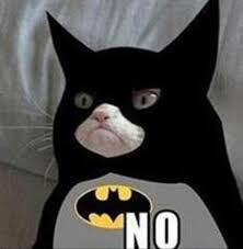Cat Suit Meme - cat suit meme 100 images grumpy cat wins 700 000 in copyright