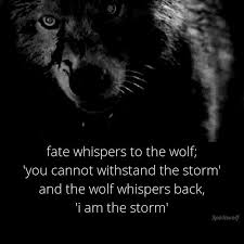 Lone Wolf Meme - unique 20 lone wolf meme wallpaper site wallpaper site