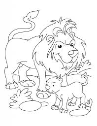 lion cub coloring pages aecost net aecost net