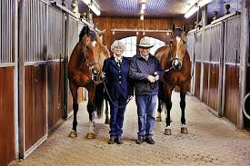 How To Tell If A Horse Is Blind A Driving Force Stockbridge Couple Riding U0027old Times U0027 To Horse