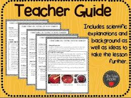 thanksgiving science activities by the wise apple tpt