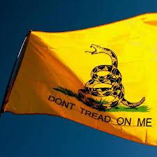 Gadsden Flag History Don U0027t Tread On Me Gadsden Flag American Af Aaf Nation