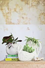 115 best images about indoor gardening on pinterest gardens