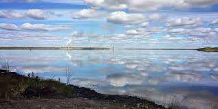 where can i find alum hab aquatic solutions alum treatment lake treatment algae