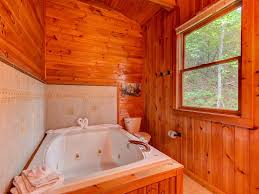 One Bedroom Cabins In Pigeon Forge Tn Vacation Home Scenic Solitude One Bedroom Cabin Pigeon Forge Tn