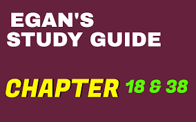 egan u0027s chapter 38 u0026 18 study guide practice questions test bank