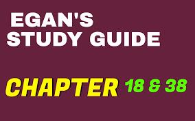 egan u0027s chapter 38 u0026 18 study guide practice questions test bank