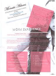 Merchandiser Resume Retail Visual Merchandiser Resume Free Resume Example And